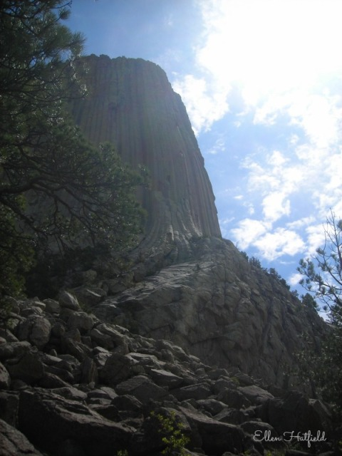 RTD3 Devils Tower Profile