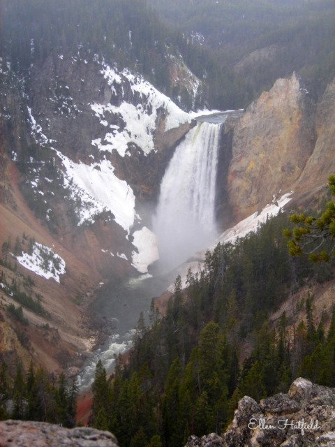 YNP Canyon Waterfall