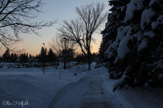 UMD snow sunset