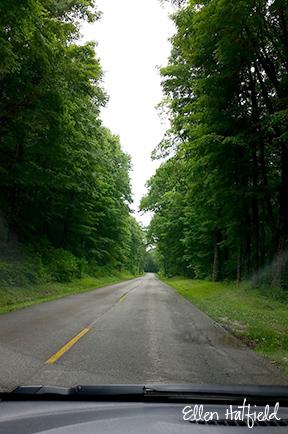 brp-road