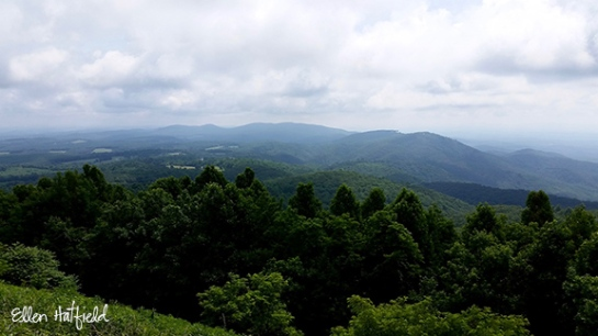 Blue Ridge Parkway, VA - The Saddle