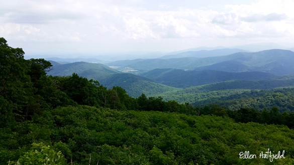 Shenandoah NP, VA - Range View Overlook 1 of 2
